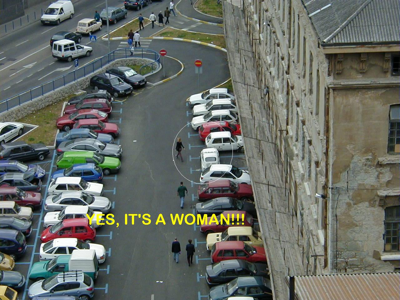 How a woman parks her car
